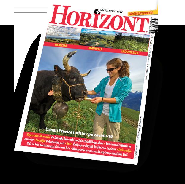 Revija Horizont 223